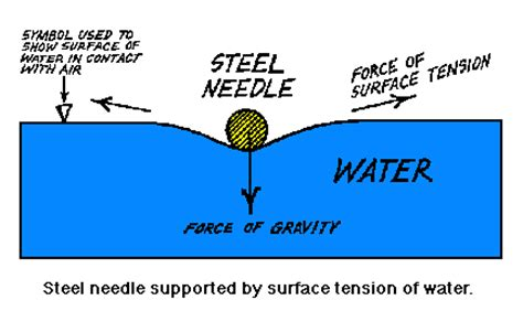 Thesis on surface tension